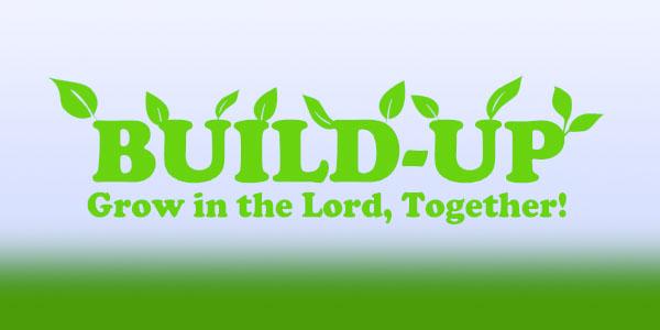 buildup-web